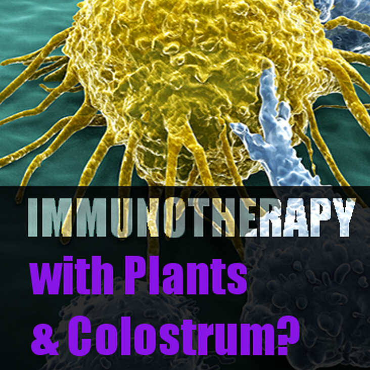 Immunotherapy_with_plants_and_Bovine_Colostrum