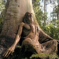 sacred_science_treeman