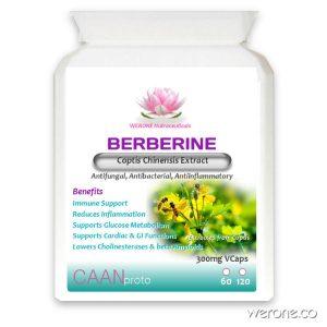 Berberine (Anti-inflammatory, Antitumor) 500mg