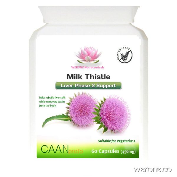 Milk Thistle (40:1 Extract) - 60 Tabs - 500mg