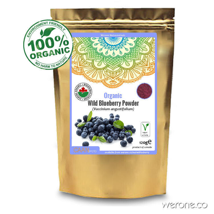 Wild Organic Blueberry Powder