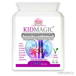 KIDMagic™ – Kidney Support Formula