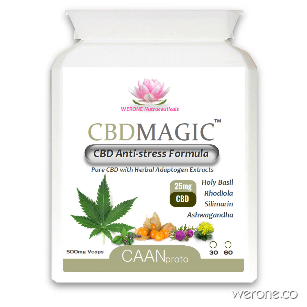 CBD Magic™ – 25mg CBD with Holy Basil, Ashwagandha for stress