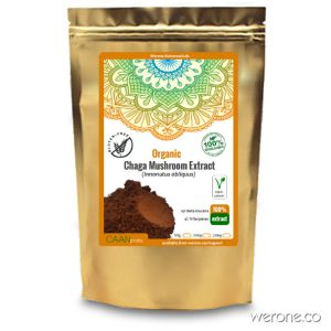 Organic Chaga 10:1 Extract Powder